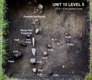 2004 © Unit 10 Level 5