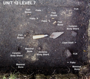 2004 © Unit 12 Level 7