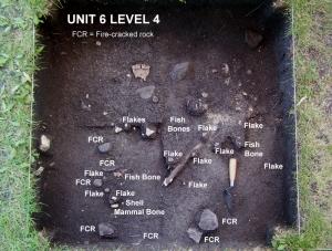 2004 © Unit  6