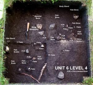 2004 © Unit 6 Level 4